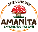 Tsagarada Pelion – AMANITA guesthouse for nature and food lovers – Manor for accommodation Holidays Trekking Gastronomy