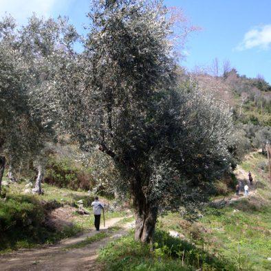 trekking_04